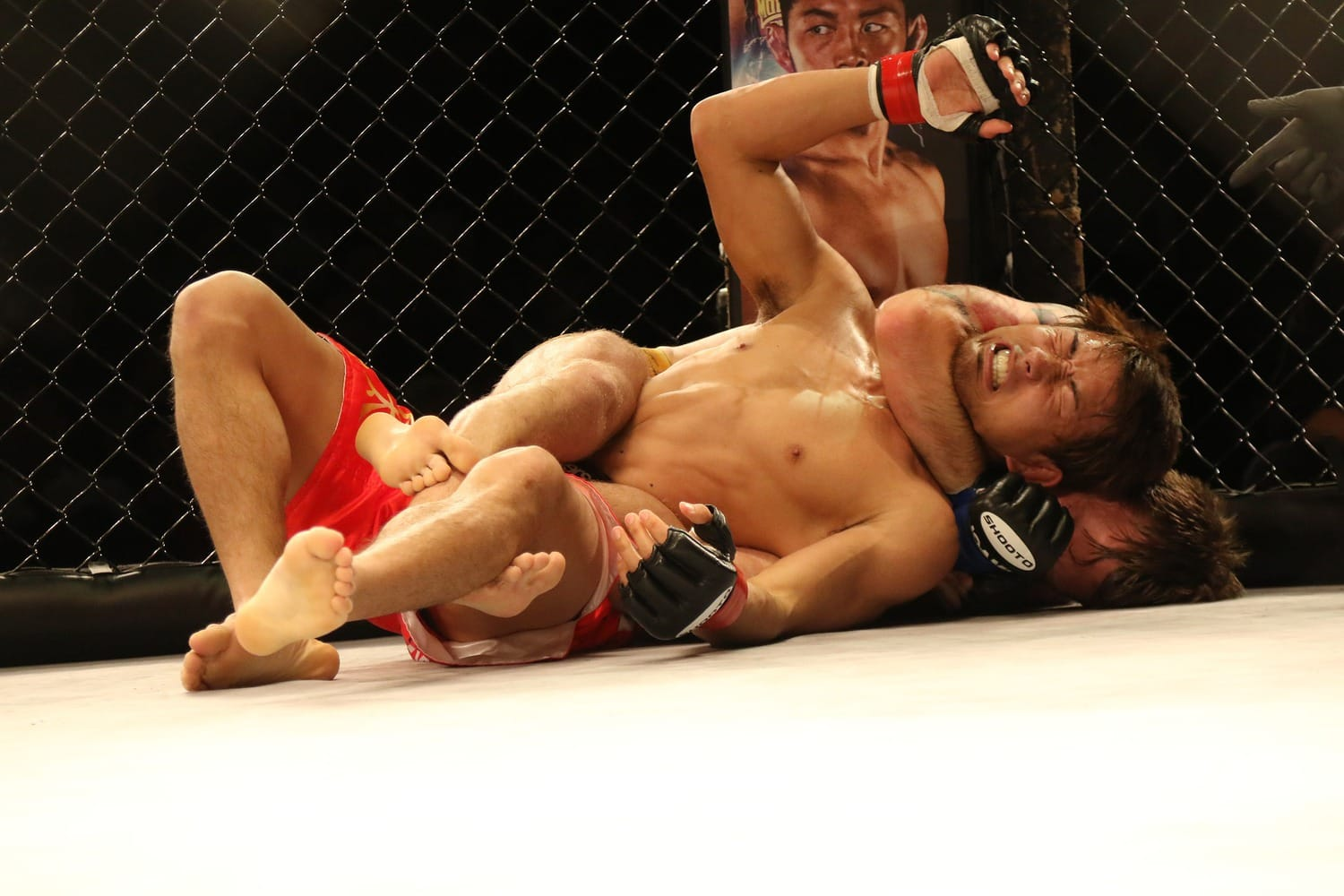 MMA Fighters in action