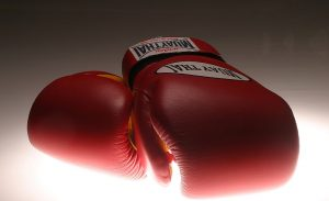 pair of red muay thai gloves - feature image